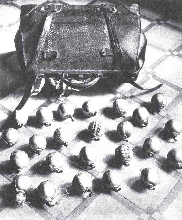 """L'«arsenal» trobat al domicili de Cándido Castañeira Docal en una foto publicada en la revista madrilenya """"Mundo Gráfico"""" del 5 de juliol de 1933"""