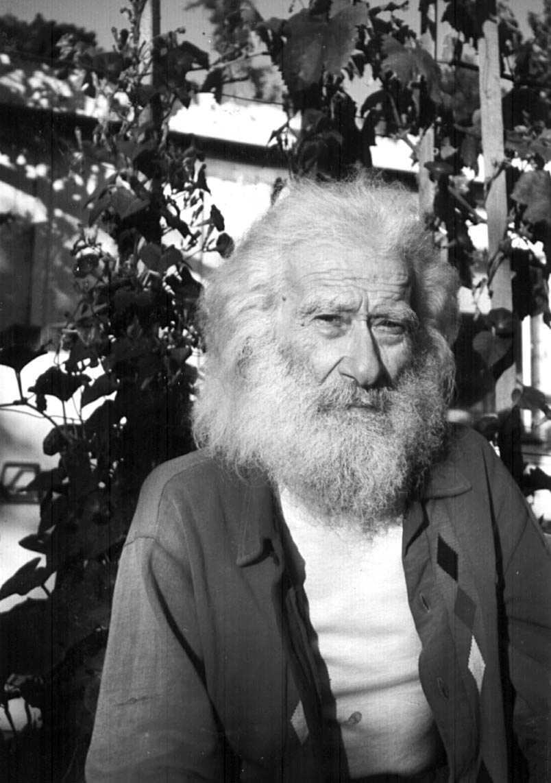 Vincenzo Ferrero a l'hort d'Aurora i Domenico Sallitto (Los Gatos, 1980)