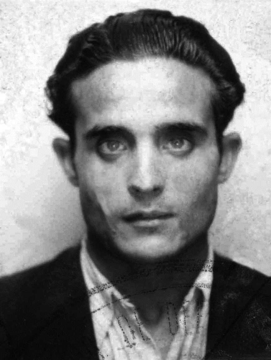 José Borrell Castedo